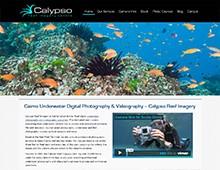 www.calypsoproductions.com.au