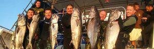 Cairns Fishing Website