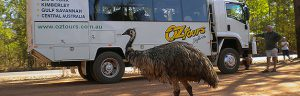 Oz Tours Safaris Website
